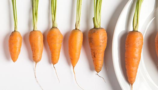 carrots_horizontal